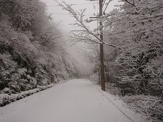 積雪(3cm).JPG